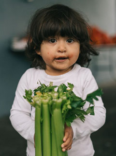 young child holding celery